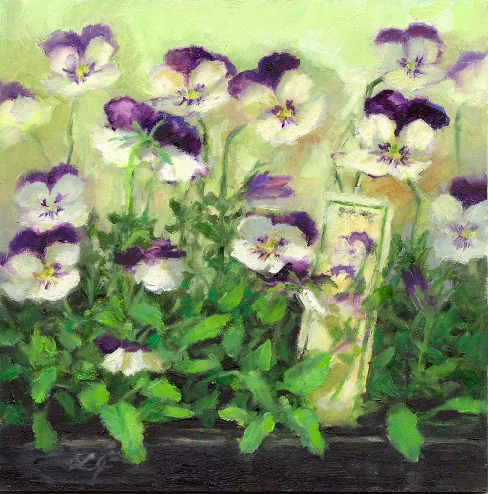 """Newborn Violas"" original fine art by Linda Jacobus"