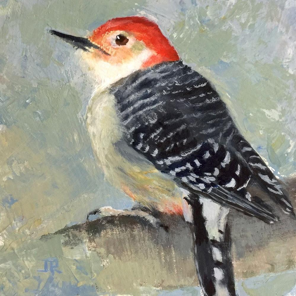 """Red-bellied Woodpecker"" original fine art by June Rollins"