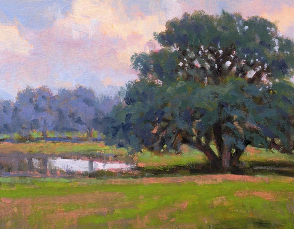 """""""Small Pond"""" original fine art by David Forks"""