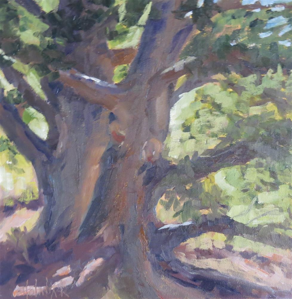 """Old Bristlecone Pines"" original fine art by Pam Holnback"
