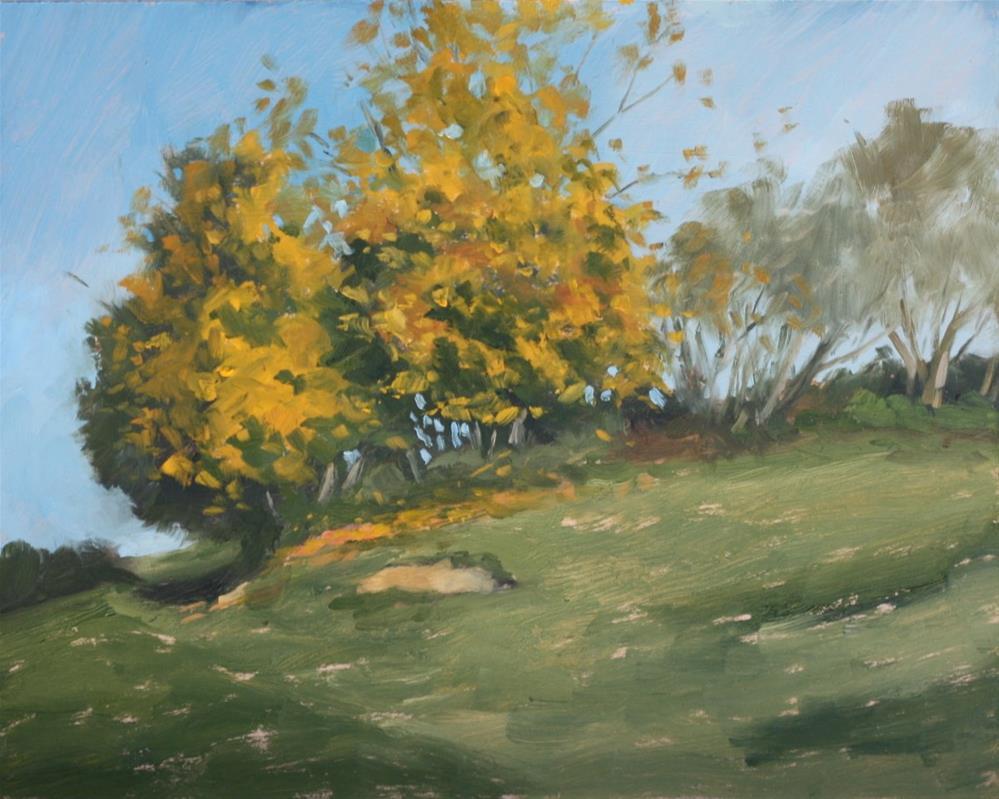 """Autumn colours"" original fine art by Graham Townsend"