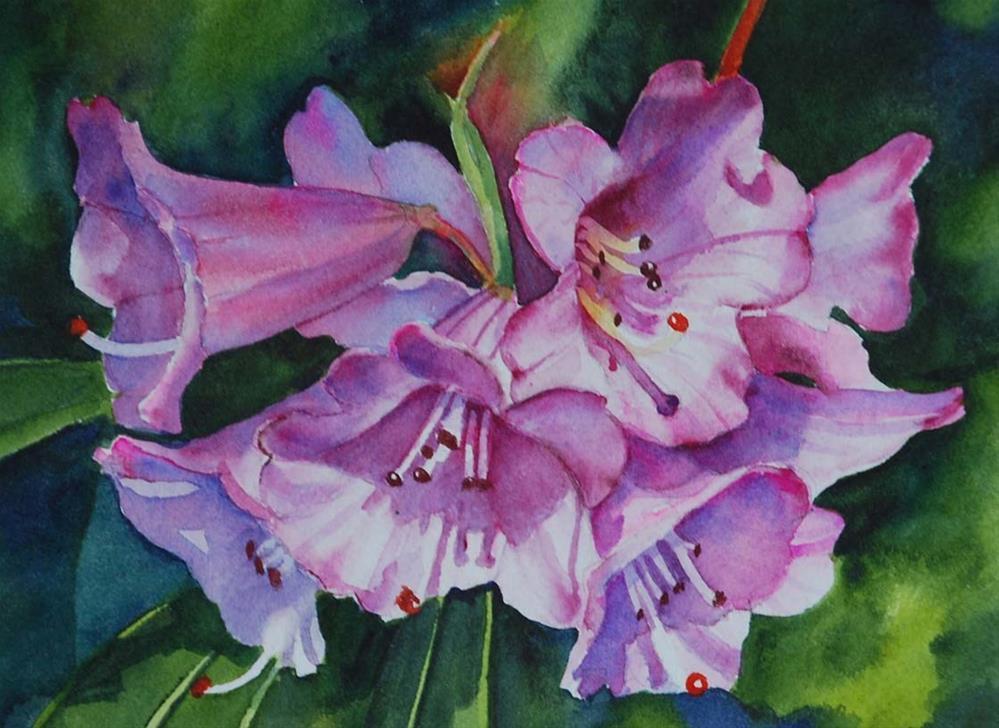 """Rhododendron Ririei"" original fine art by Mary Anderson"