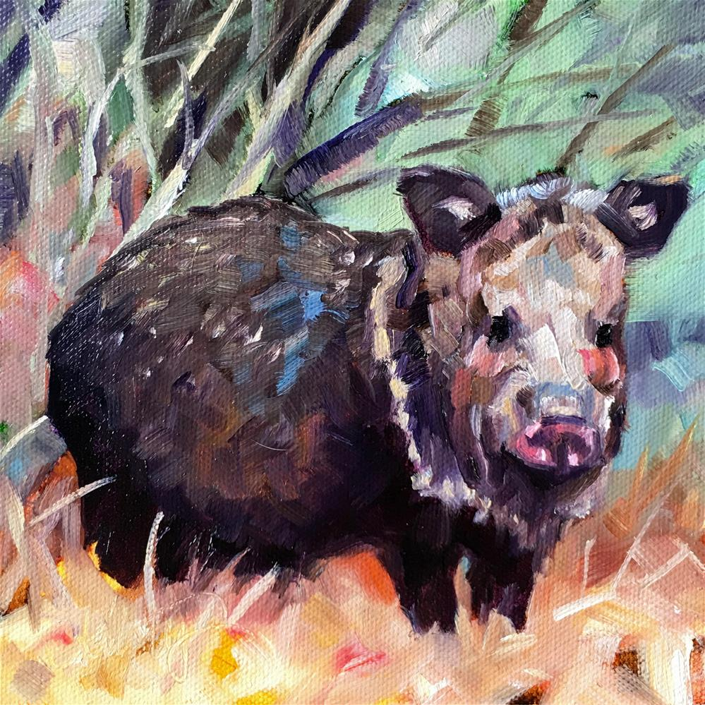 """Javelina Standoff"" original fine art by Kristy Tracy"