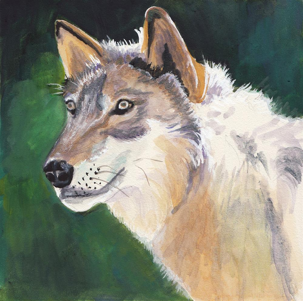 """""""WOLF"""" original fine art by Bunny Griffeth"""