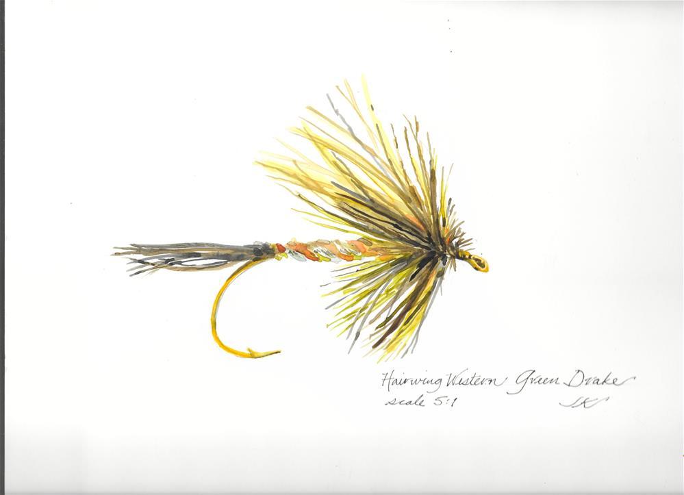"""""""Hairwing Western Green Drake"""" original fine art by Jean Krueger"""