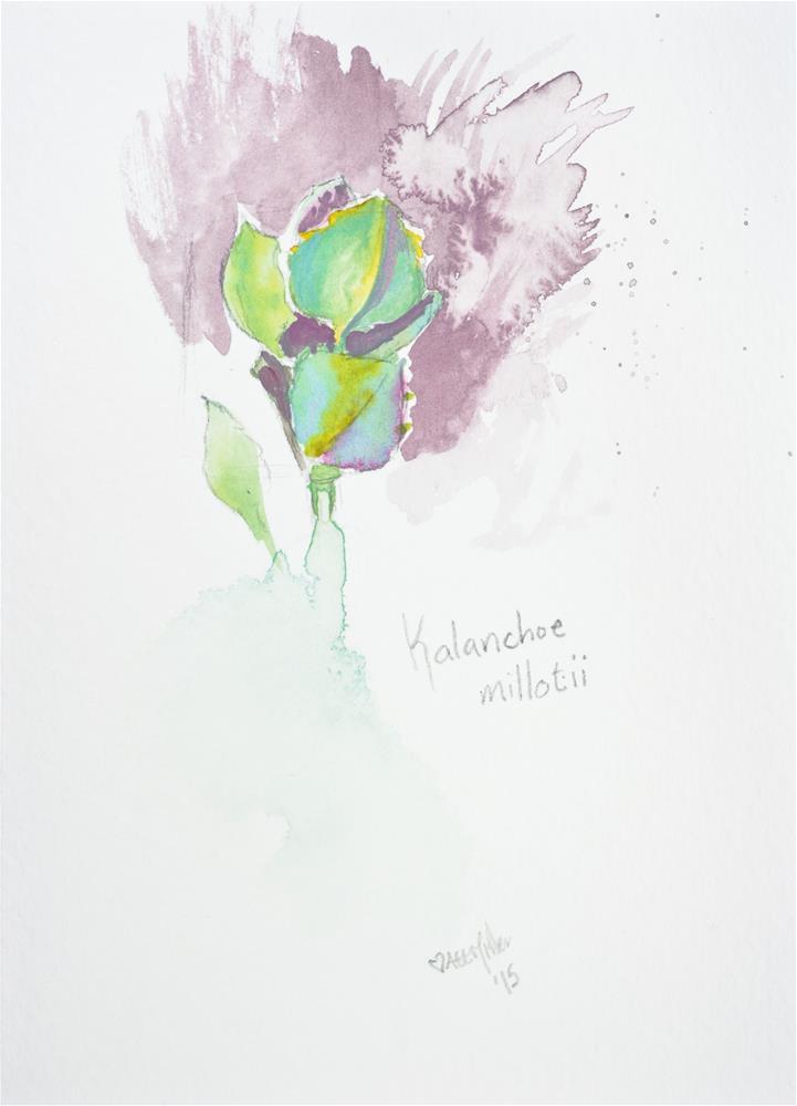 """Daily #142 - Kalanchoe millotii"" original fine art by A.E.E. Miller"