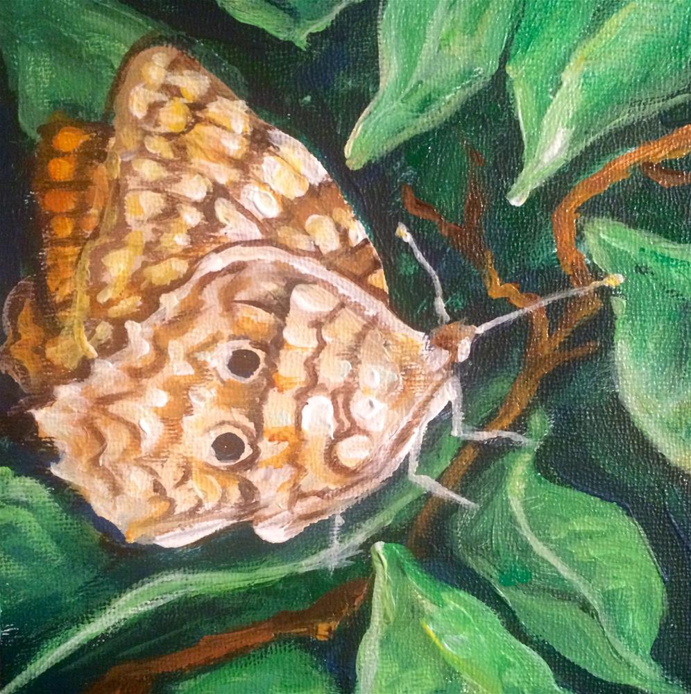"""""""Butterfly"""" original fine art by Valerie Vescovi"""