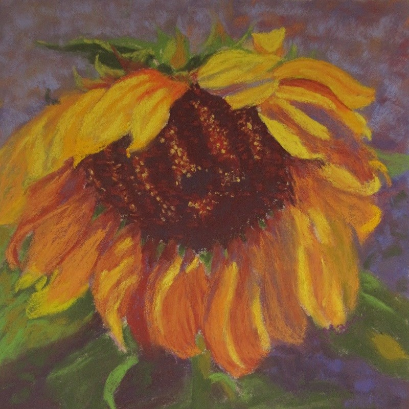 """Sunflower South"" original fine art by Ruth Mann"
