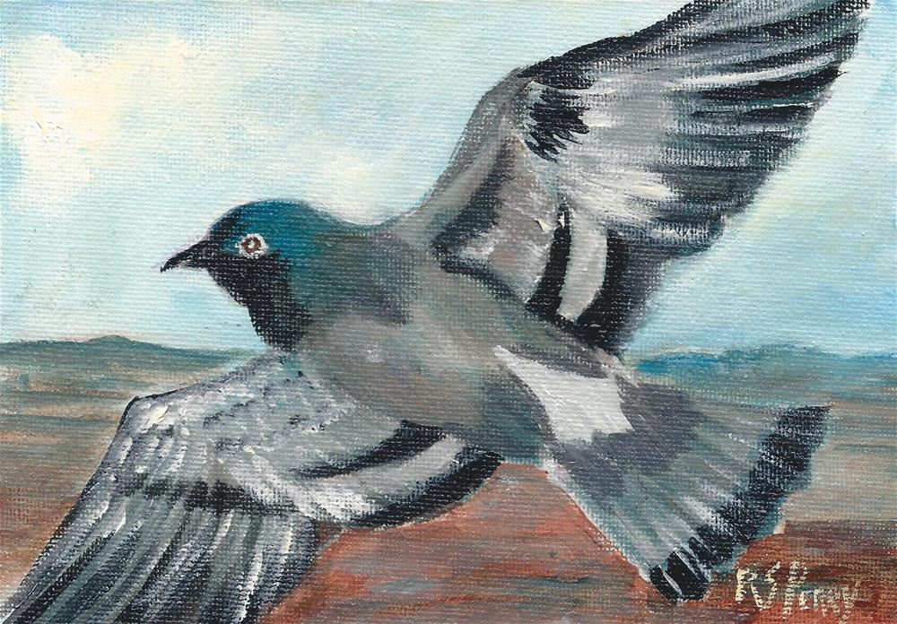 """Pigeon 3"" original fine art by R. S. Perry"