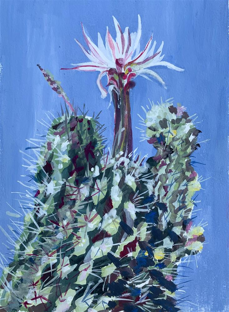 """Echinopsis chiloensis - Hedgehog Cactus"" original fine art by Jean Krueger"