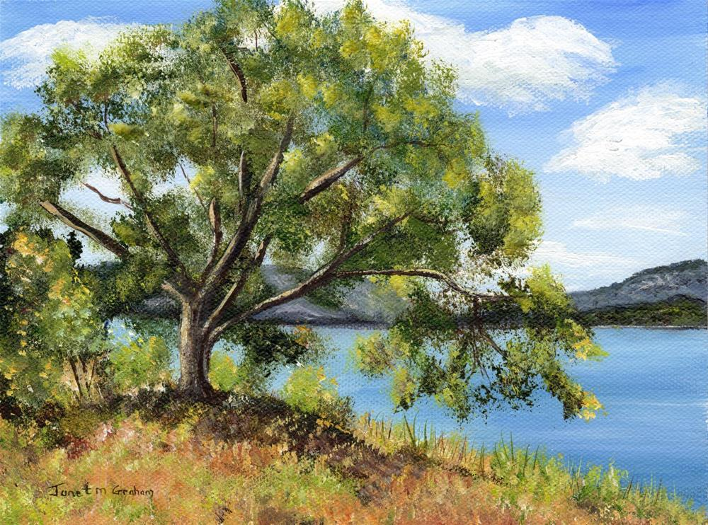 """Lakeside Tree"" original fine art by Janet Graham"