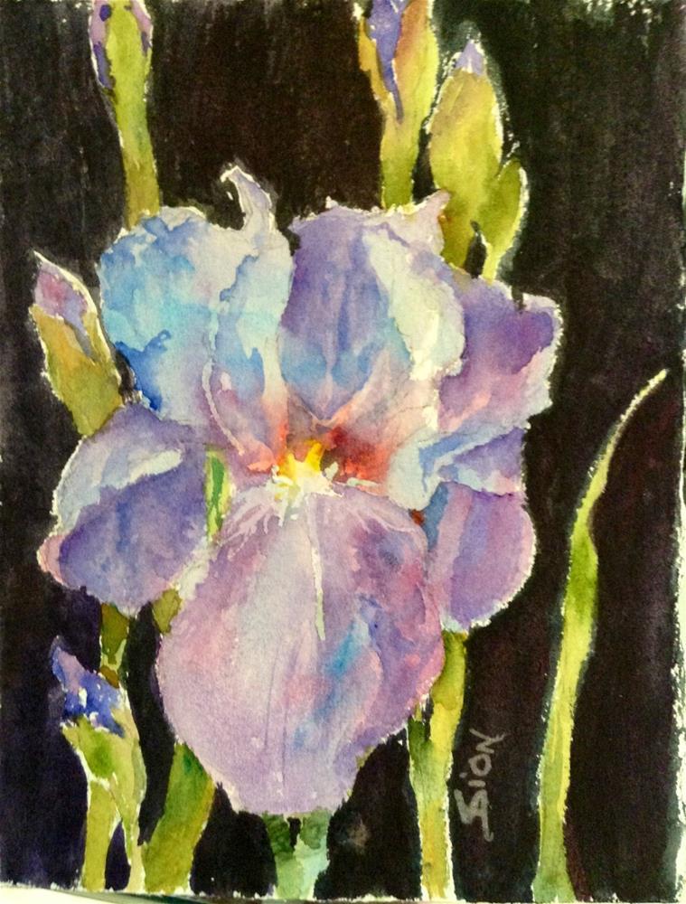 """""""Wild Thing"""" original fine art by Sue Dion"""