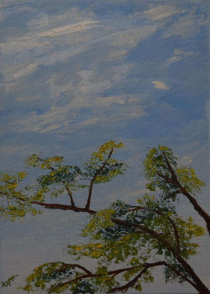 """Early Autumn Tree Tops"" original fine art by Tisha Mark"