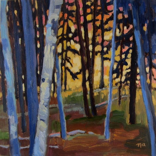 """Birch and Pine at Dusk"" original fine art by Nicki Ault"