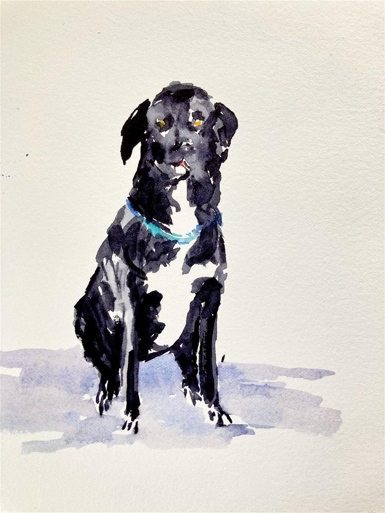 """Seated Dog"" original fine art by Judith Freeman Clark"
