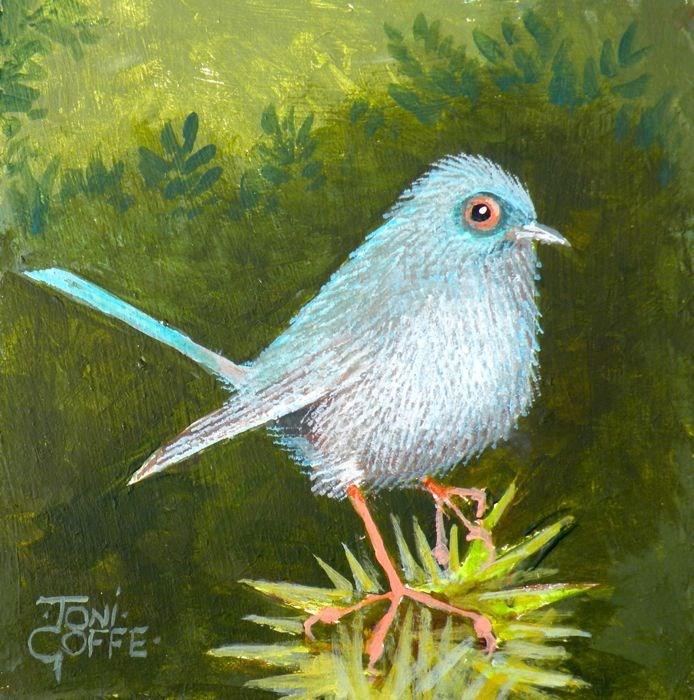 """Bradford Warbler"" original fine art by Toni Goffe"