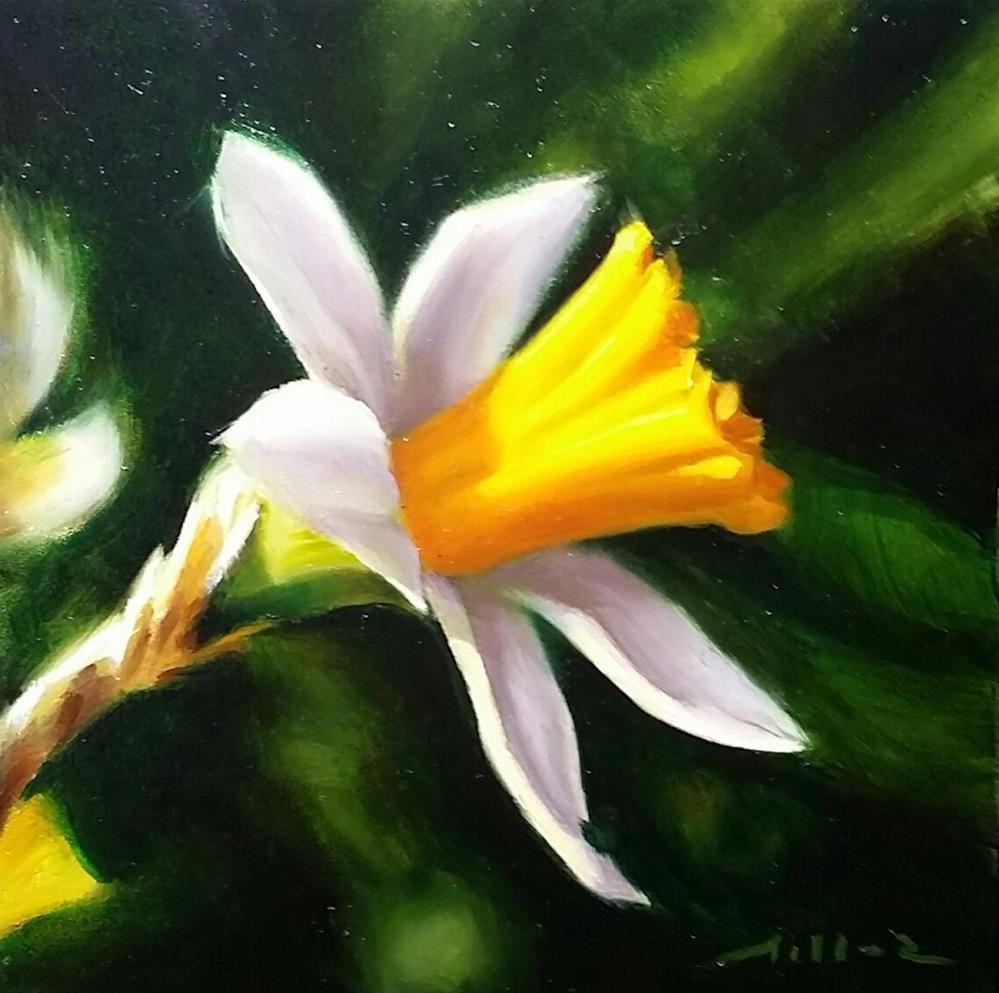 """Daffodil Study #3"" original fine art by Nathan Miller"