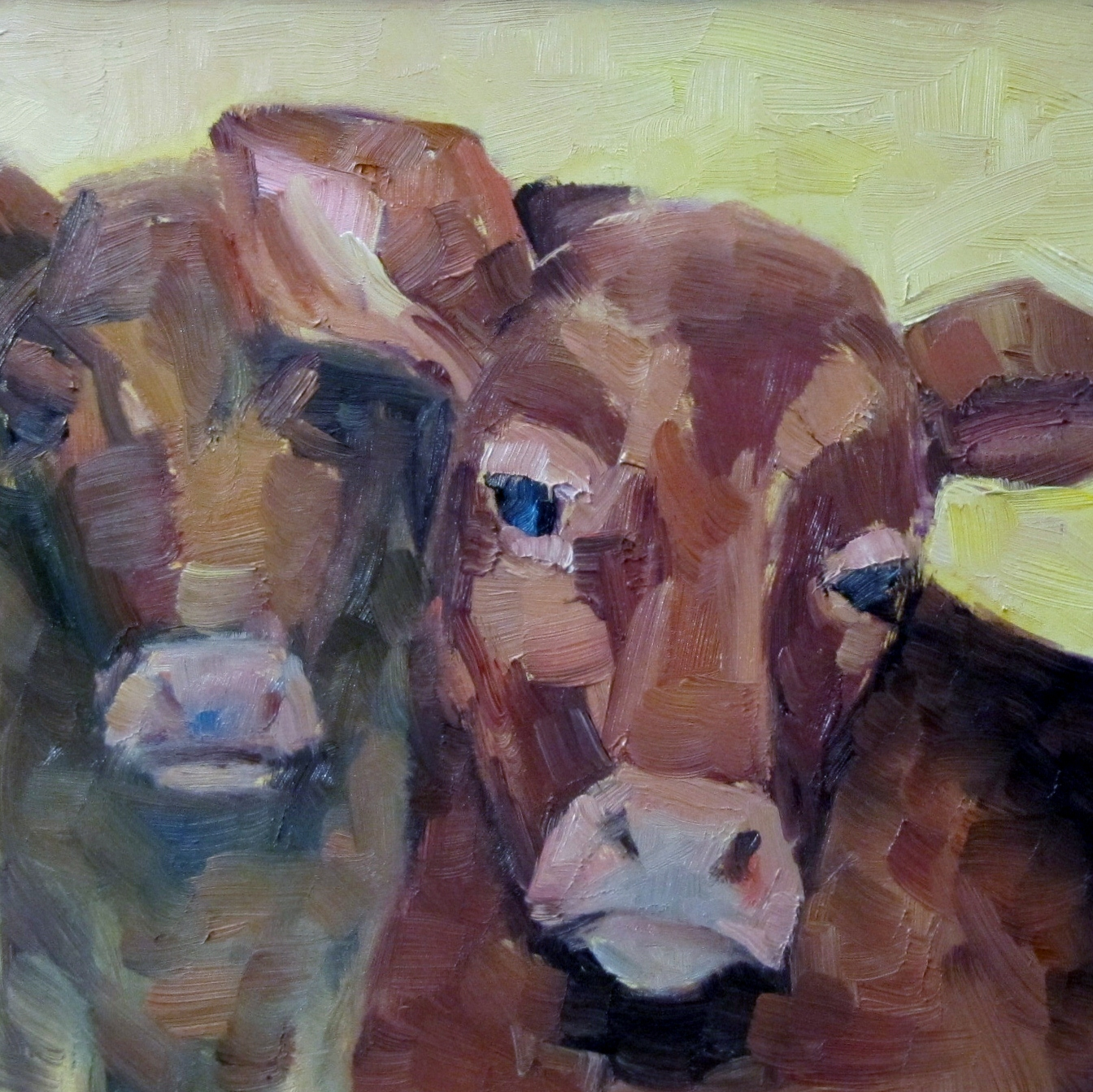 """""""The gentle Cow"""" original fine art by Steinunn Einarsdottir"""