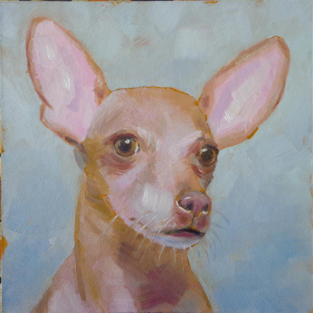 """Chihuahua"" original fine art by Maria Z."