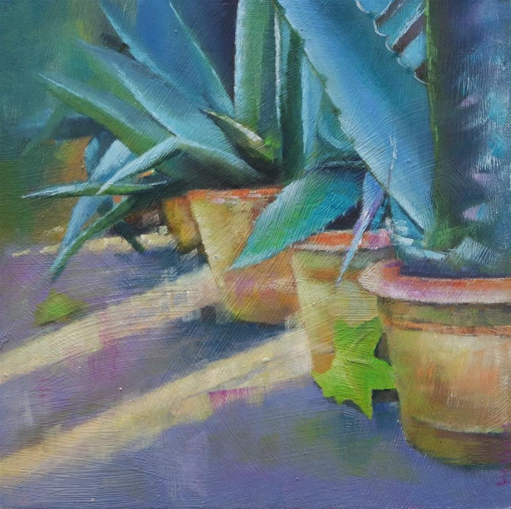 """Aloe and sunlight"" original fine art by Cathy Holtom"