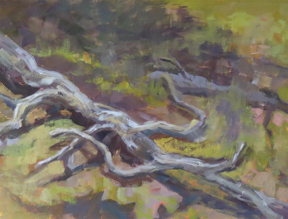 """Fallen Log"" original fine art by Pam Holnback"