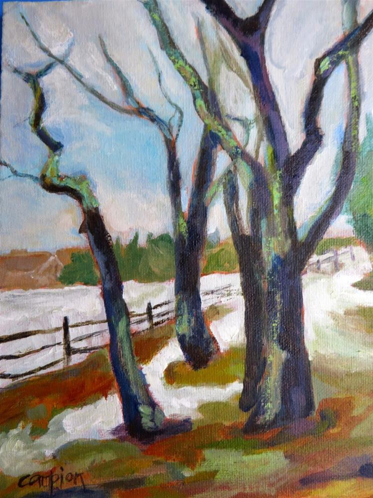 """586 Back Roads Plymouth, Massachusetts"" original fine art by Diane Campion"
