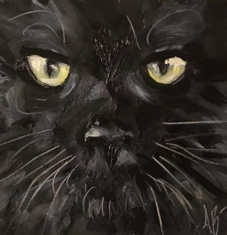 """Cat in Black"" original fine art by Annette Balesteri"