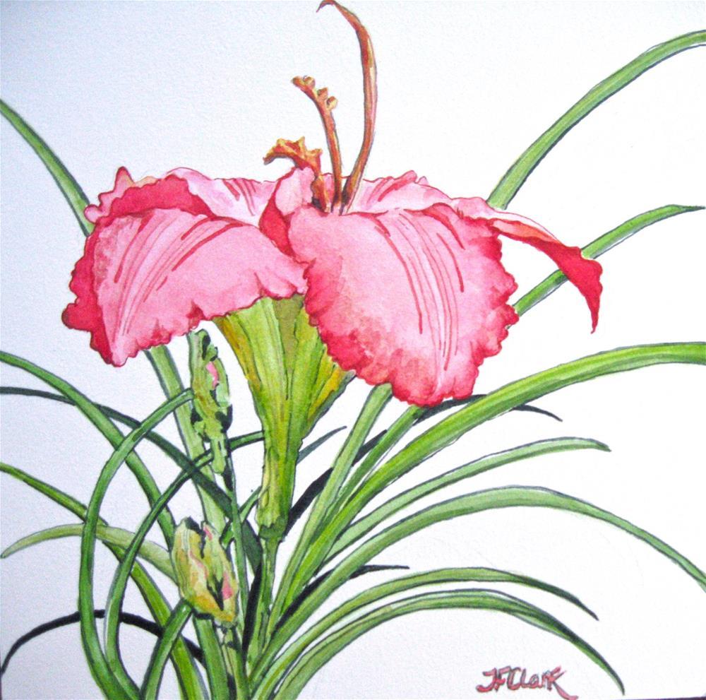 """Lily of the Day I"" original fine art by Judith Freeman Clark"
