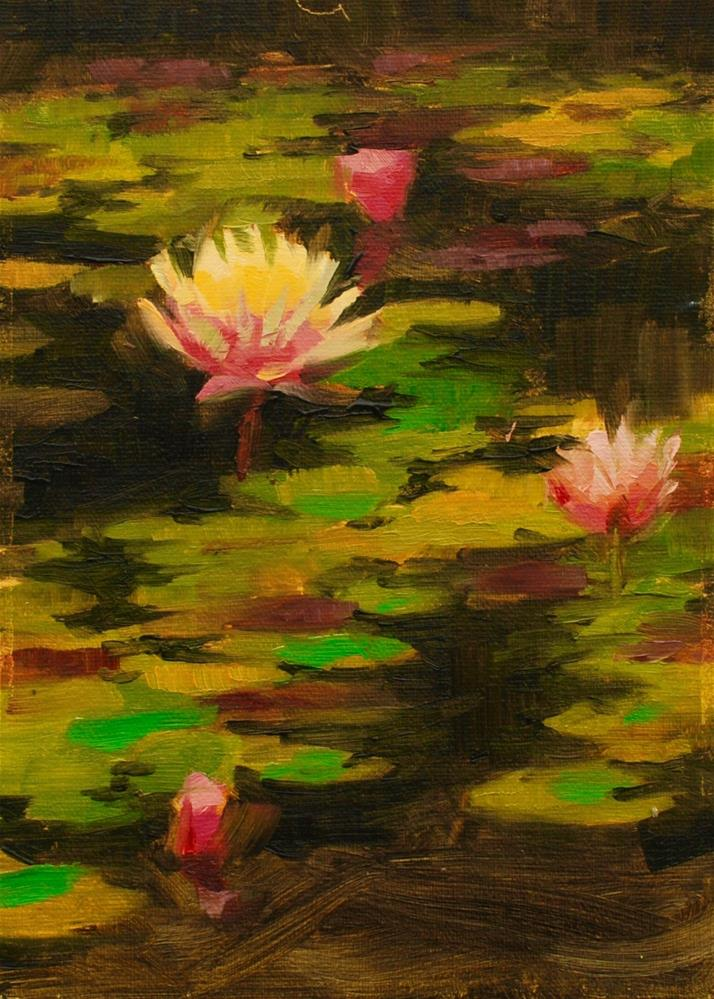 """VanDusen Water Lillies"" original fine art by Susan McManamen"