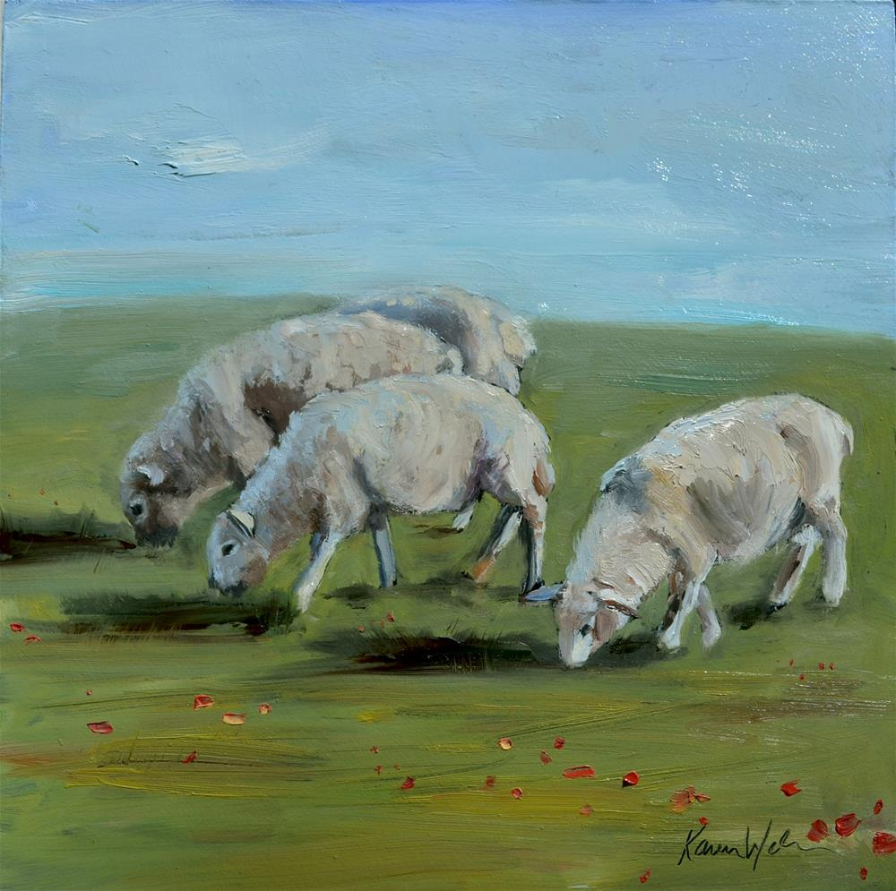 """Sheep in mid morning"" original fine art by Karen Weber"