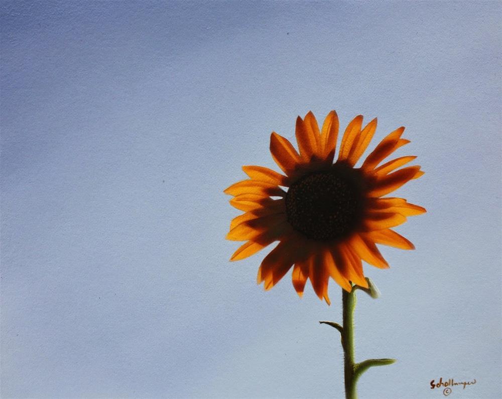 """Sunflower at Dusk"" original fine art by Fred Schollmeyer"