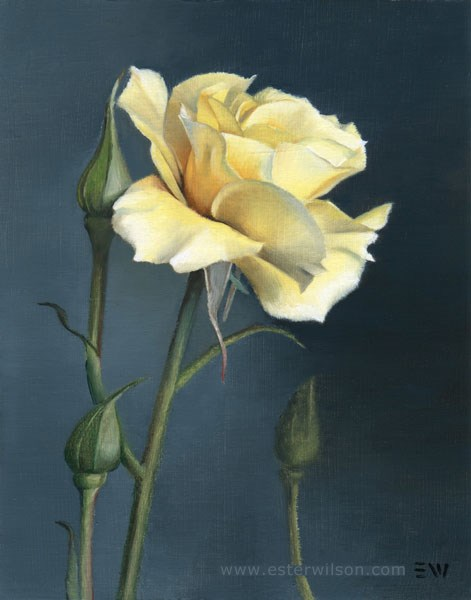 """Yellow Rose"" original fine art by Ester Wilson"