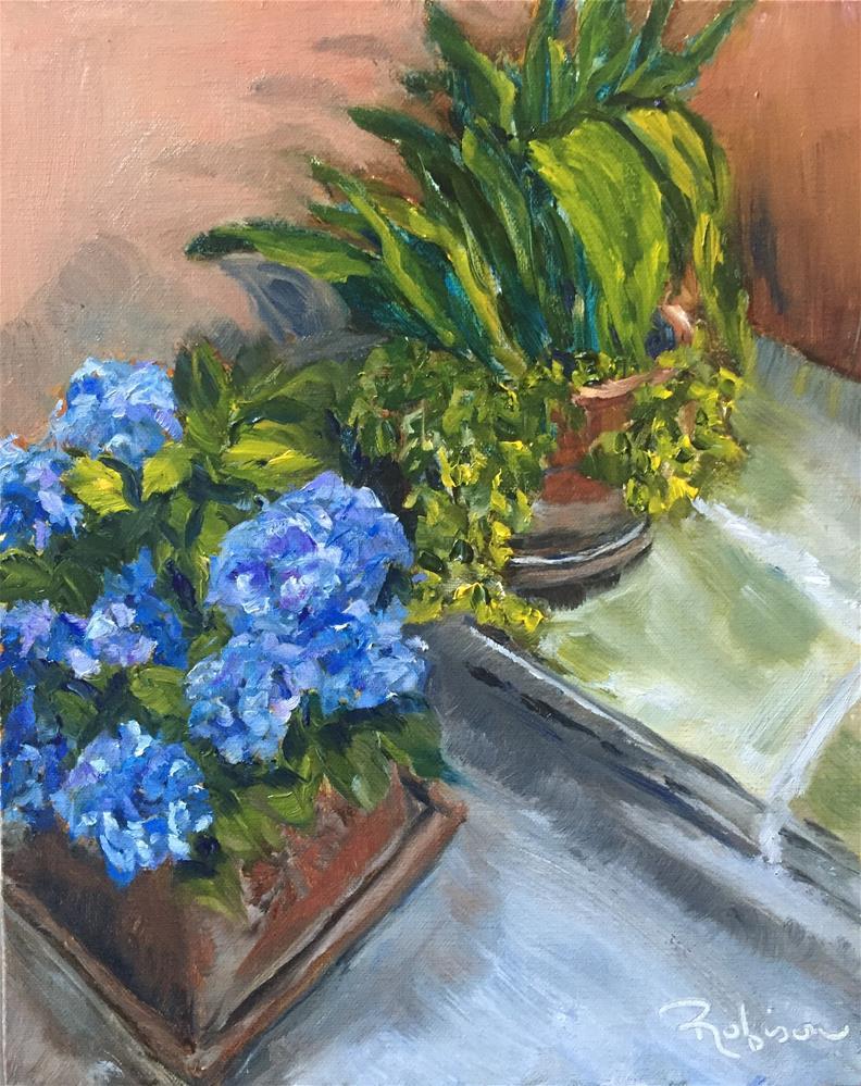 """""""Spello Blue Hydrangeas"""" original fine art by Renee Robison"""
