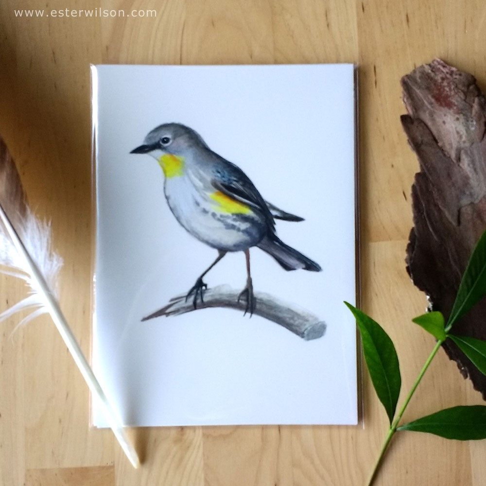 """Warbler"" original fine art by Ester Wilson"