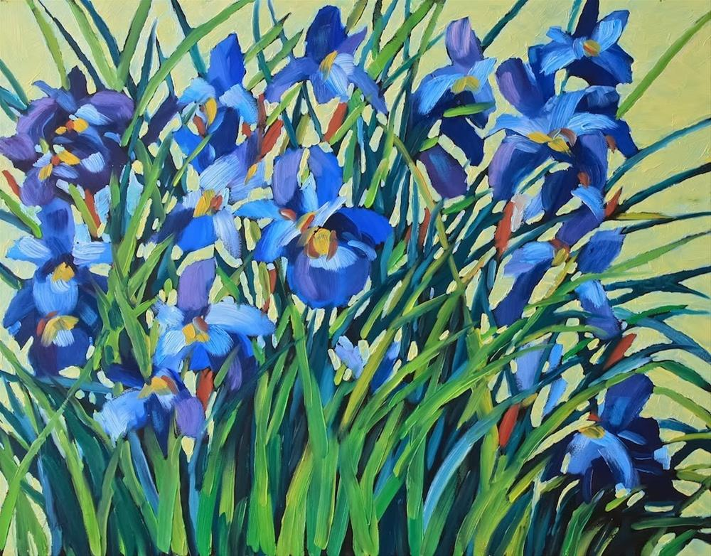 """Iris Profusion"" original fine art by Mary Anne Cary"