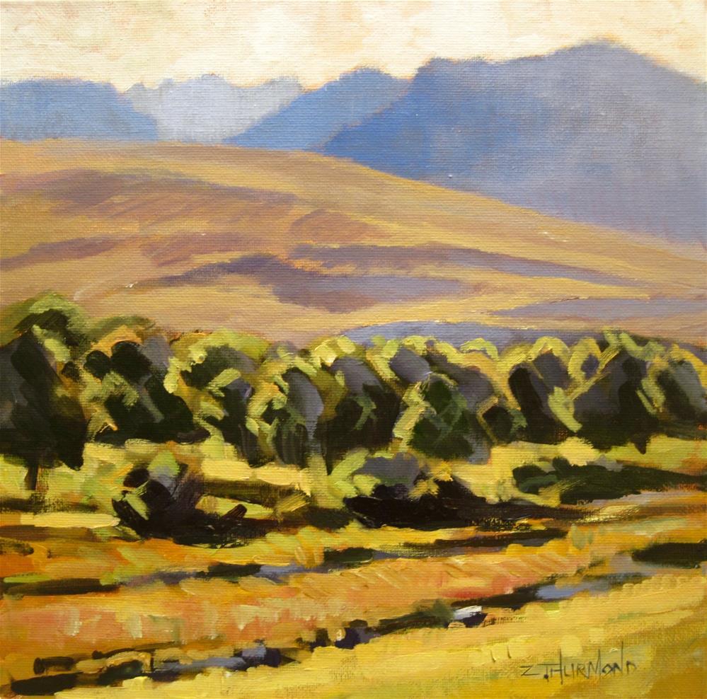 """Ohio Creek Study"" original fine art by Zack Thurmond"
