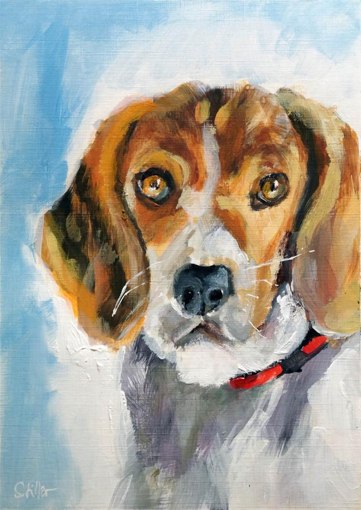 """2655 Beagle"" original fine art by Dietmar Stiller"