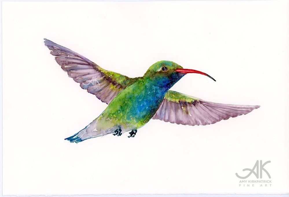 """""""BROAD-BILLED HUMMINGBIRD #0473"""" original fine art by Amy Kirkpatrick"""
