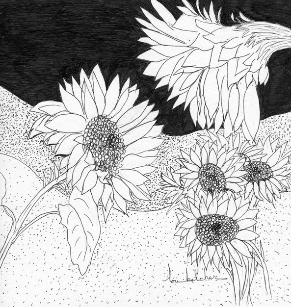 """Sunflowers"" original fine art by Lou Belcher"