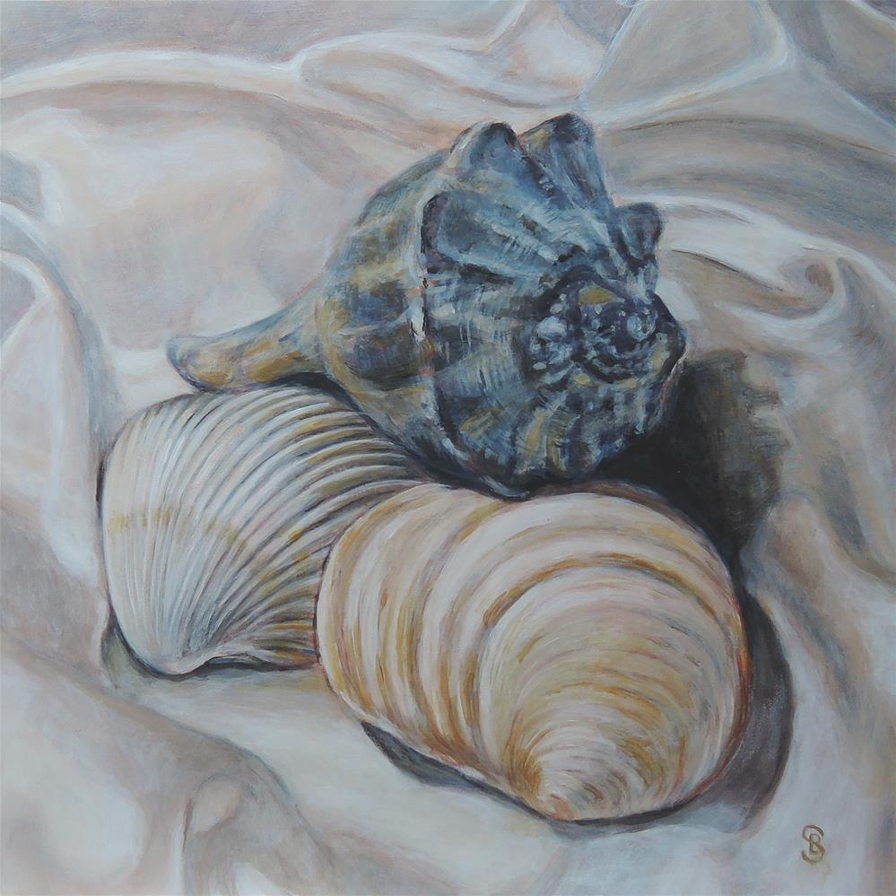 """Shackleford Shells 1"" original fine art by Belinda Scheber"