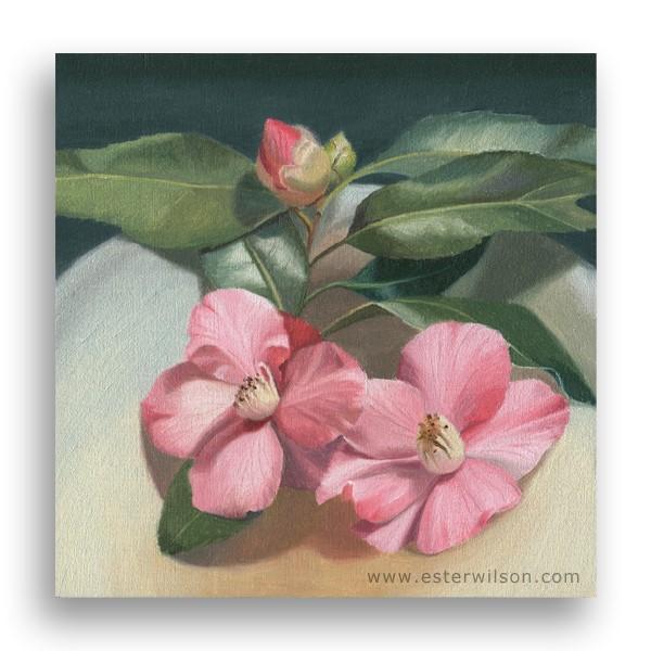 """Blooming Pinks"" original fine art by Ester Wilson"