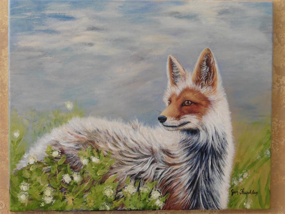 """""""Artic Fox"""" original fine art by Janice Freischlag"""