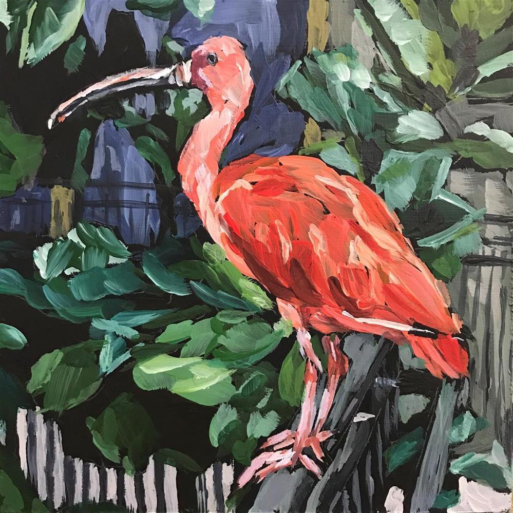 """Scarlet Ibis"" original fine art by Gina Garding"