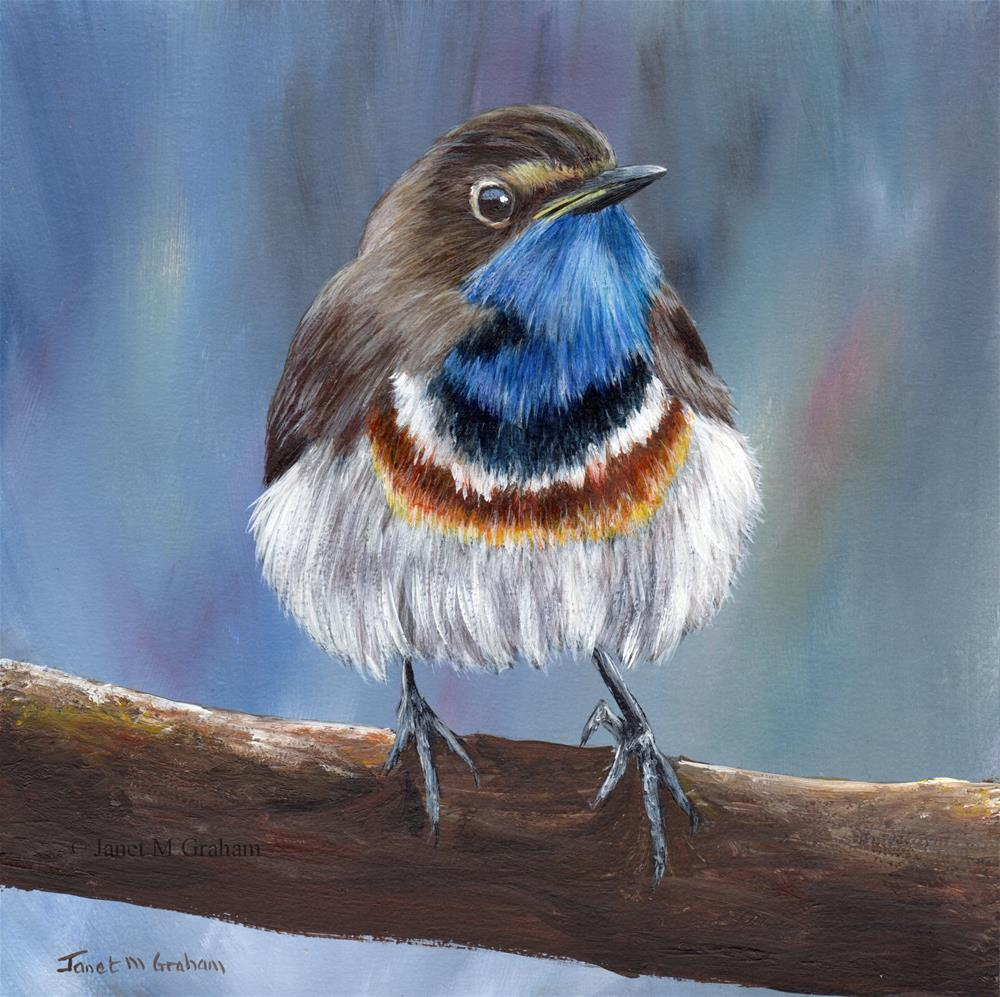 """Bluethroat"" original fine art by Janet Graham"