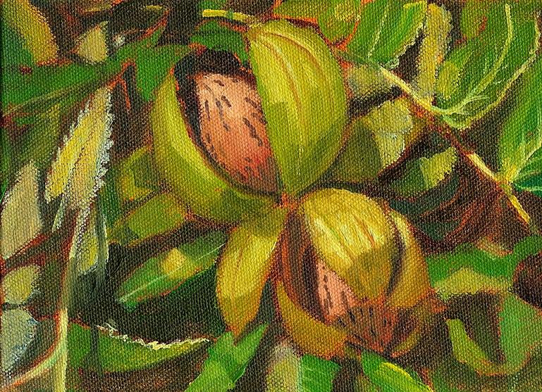 """Tennessee Pecans"" original fine art by Jeff Atnip"