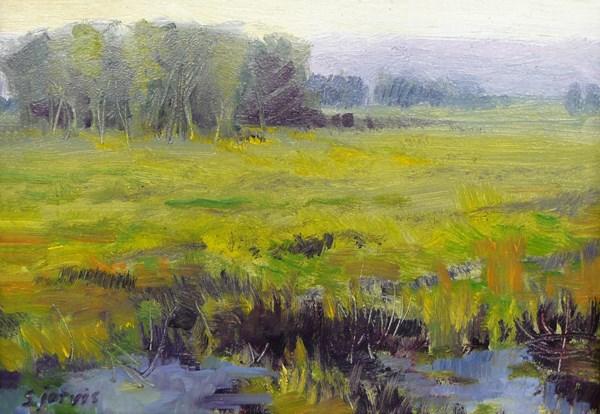 """""""Summer meadow"""" original fine art by Susan N Jarvis"""
