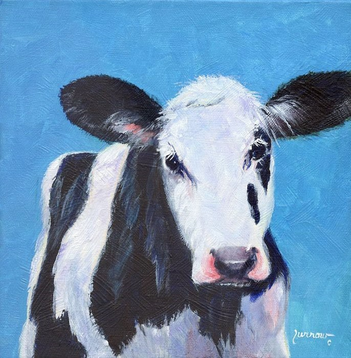 """""""Cow dressed in Turquoise"""" original fine art by Sue Furrow"""