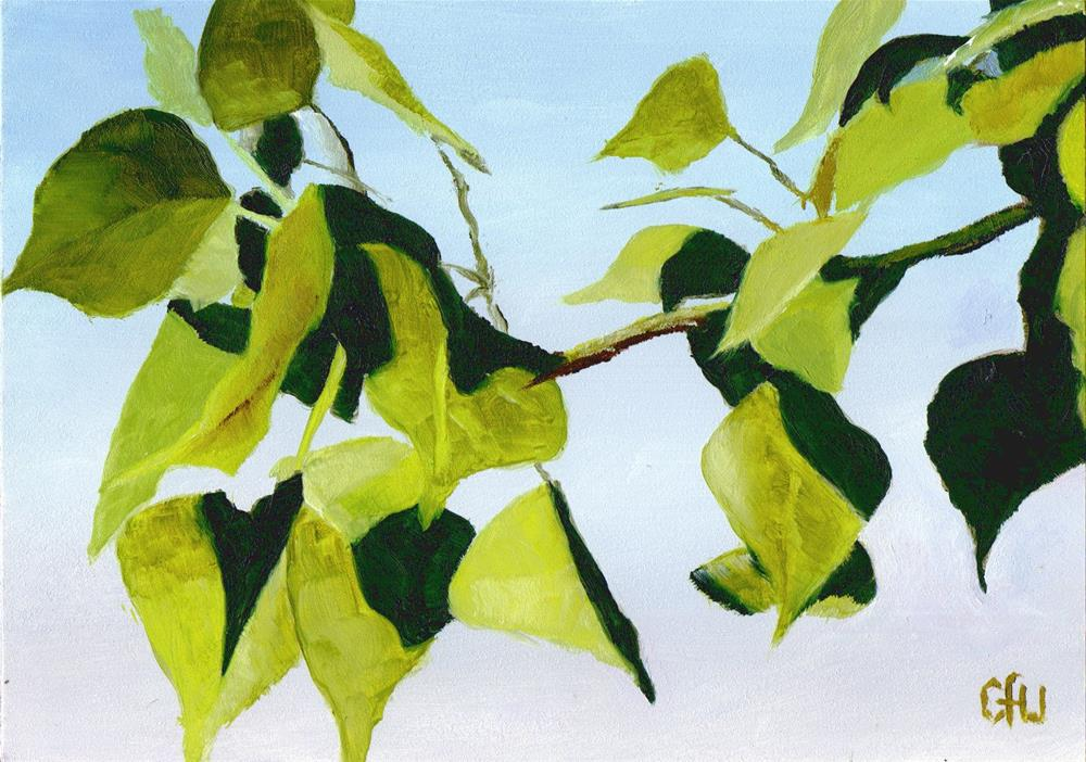 """Poplar"" original fine art by Gary Westlake"