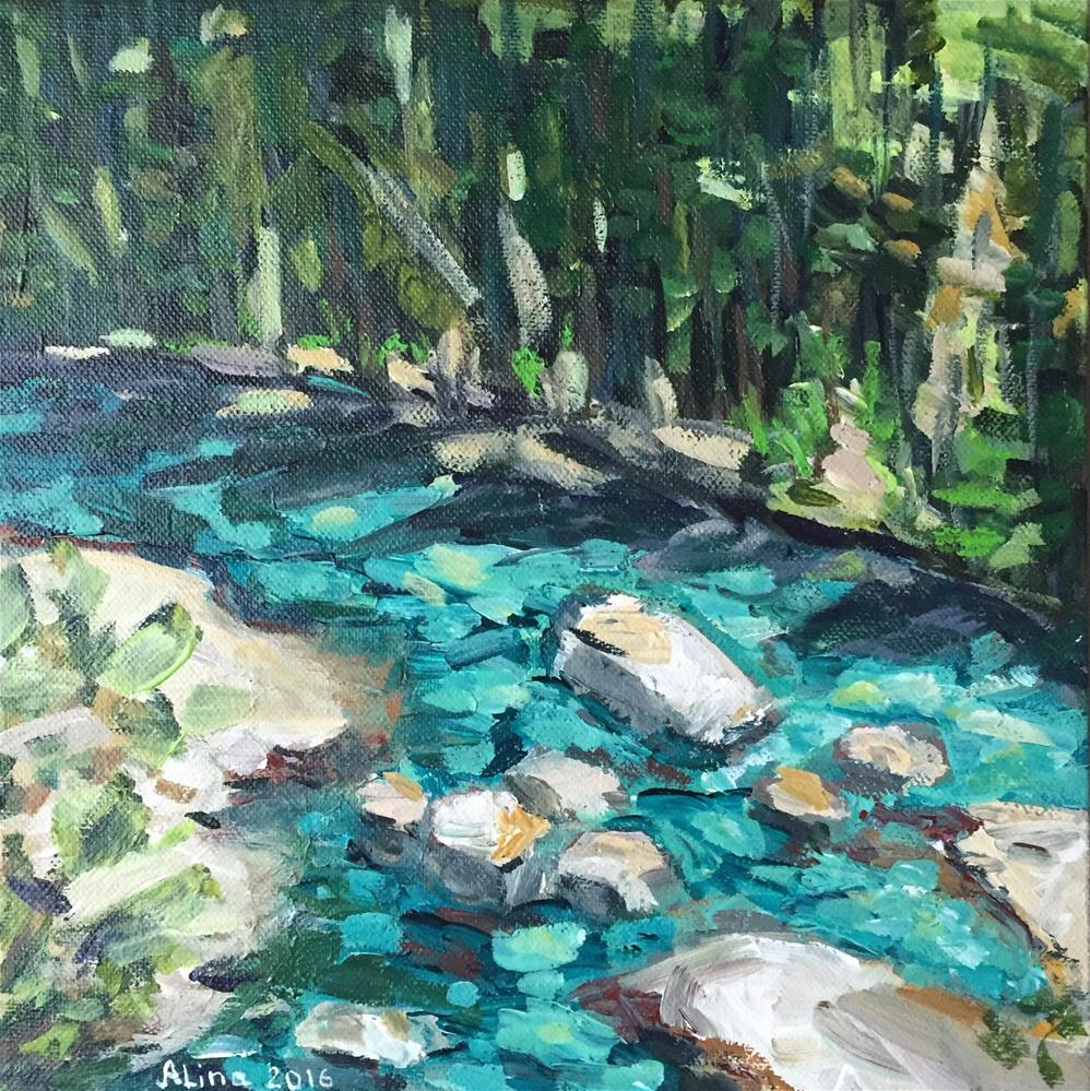 """Lamar River"" original fine art by Alina Vidulescu"