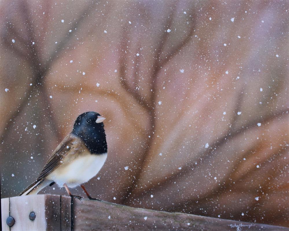 """""""Solemn Snow Bird"""" original fine art by Fred Schollmeyer"""